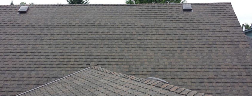 pitt meadows roof